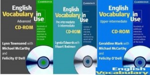 Cambridge English Vocabulary In Use Collection